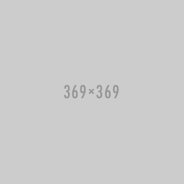 369x369